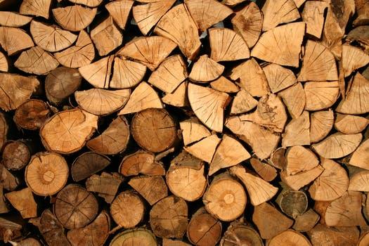 Trælast online til et vildt byggeprojekt